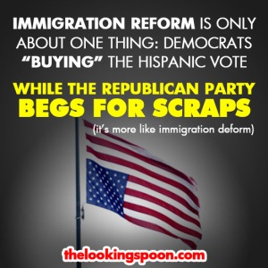 immigration_reform_is_pandering_for_votes