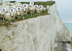 obama_sheep