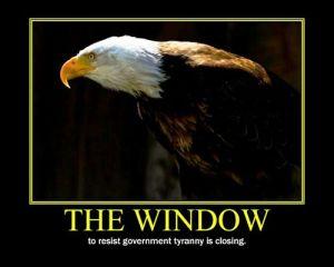 Window-To-Resist
